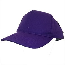 Headwear Boston Printers Cap